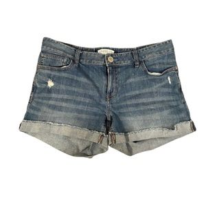 Express distressed jean shorts 12